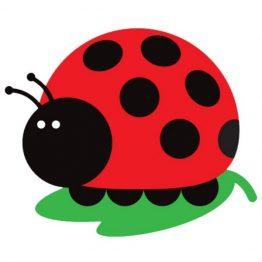 Juju Ladybug