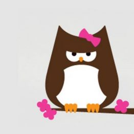 Papar Owl