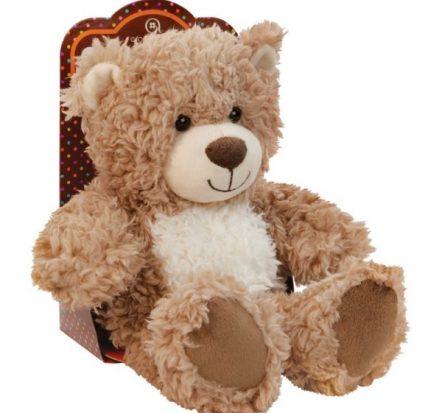 Aroma Home Cosy Hottie Bear
