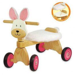 I'm Toy Bunny Paddie Rider