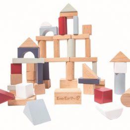 everearth 50pcs_lifetyle_building_blocks-2_edit