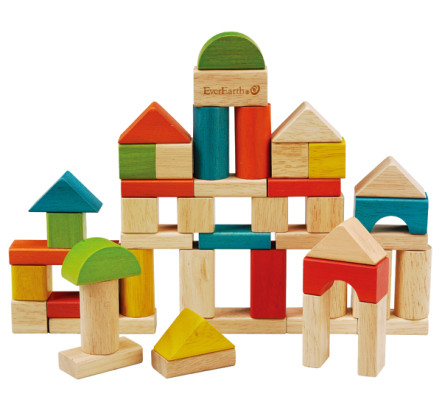 EverEarth Building Block Set