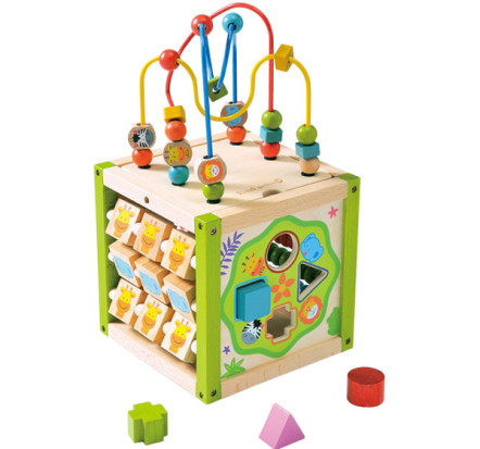 EverEarth Multi Play Activity Cube